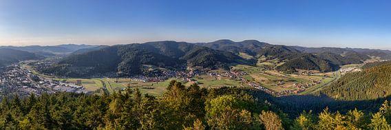 Kinzigtal Panorama