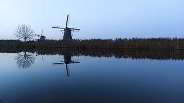De boom die een molen wil zijn van Customvince | Vincent Arnoldussen