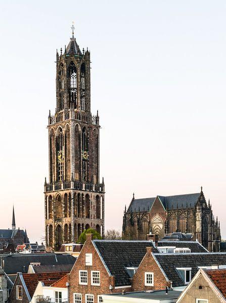 Dom van Utrecht met Kathedraal van Hans Verhulst