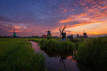 Nederlands landschap van Pieter Struiksma
