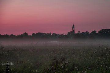 Brouillard du soir