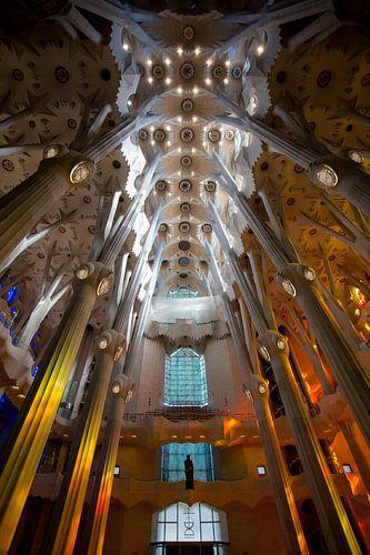 Prachtige Sagrada Familia sur