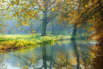 Herfst op Landgoed Elswout sur Michel van Kooten