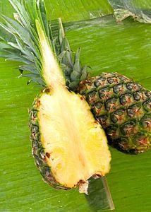 fruit1445