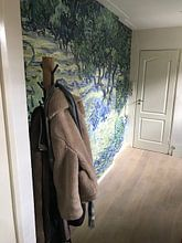 Kundenfoto: Olivenhain - Vincent van Gogh, auf fototapete