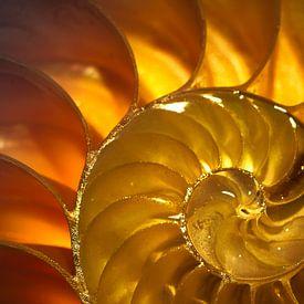 Gouden golf van Sonja Pixels