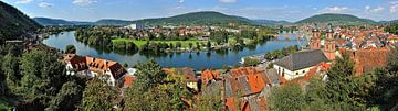Miltenberg Main Loop - Panorama van Tom River Art