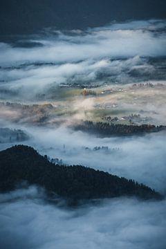 Morgennebel von Dylan Shu
