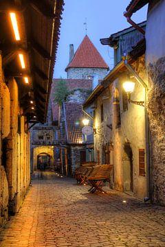 St. Katharinenpassage, Unterstadt, Altstadt ,  Tallinn, Estland, Europa