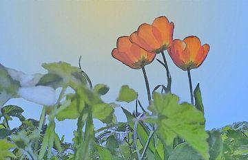 Rote Tulpen in der Sonne unter einem blauen Himmel - Gemälde von Schildersatelier van der Ven