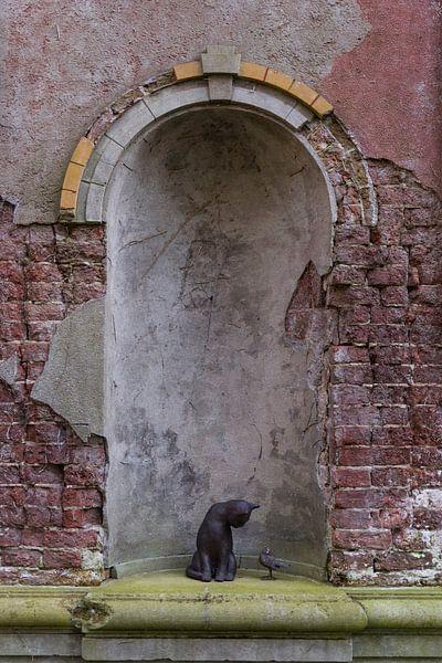 vieux mur avec un chat et un oiseau sur ChrisWillemsen