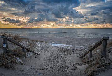 Naar het strand! van Leon Okkenburg