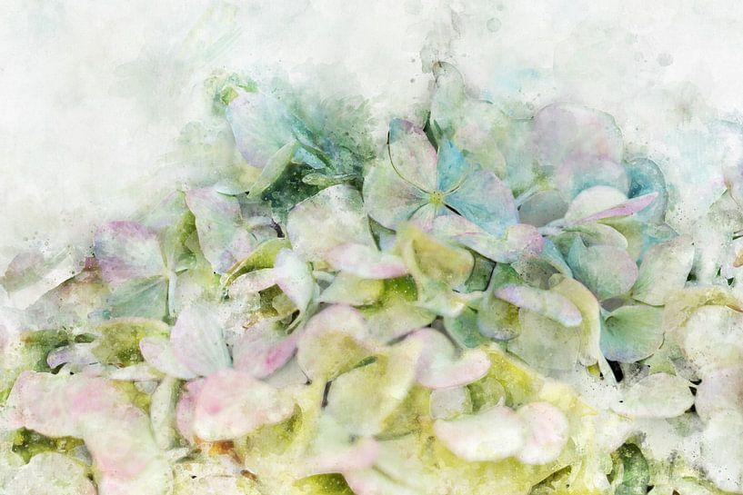 Bloemen 7 van Silvia Creemers