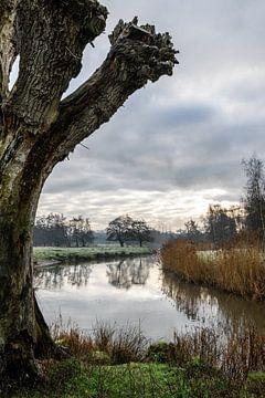 Une promenade dans le Dommelbeemden sur Gerry van Roosmalen