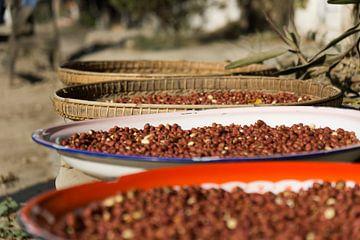 Pinda's in schalen, Hsipaw, Myanmar sur Annemarie Arensen