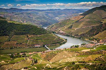 Fluss Douro von Antwan Janssen