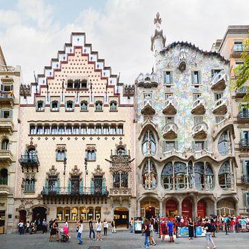 Barcelona | Casa Batllo door Antoni Gaudi van Panorama Streetline