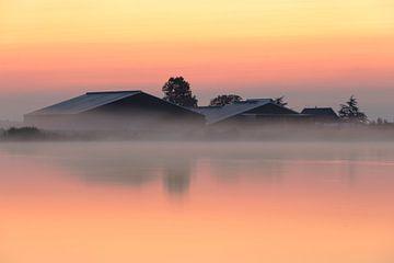 Ein Bauernhof, halb versteckt in einer Decke aus Morgennebel. von Eelco de Jong