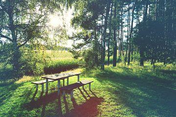 Picknick tafel van BVpix