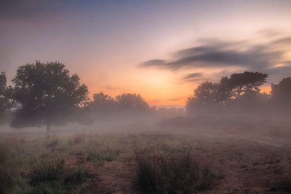 Kortenhoef #2 van Ruud van Oeffelen-Brosens