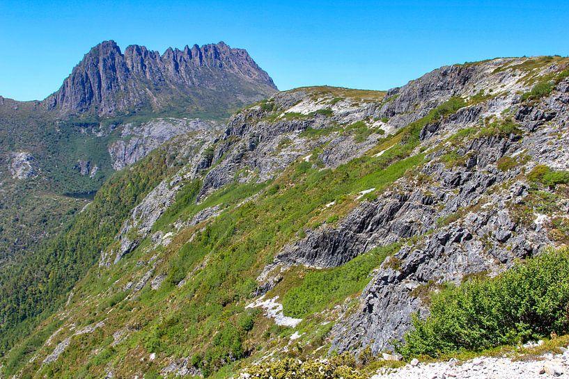 Uitzicht vanaf Marion Lookout op Cradle Mountain van Daphne de Vries