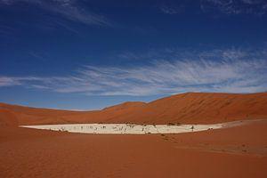NAMIBIA ... Deadvlei pan