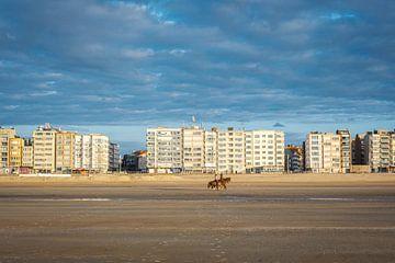 Strand en dijk van Koksijde van Johan Vanbockryck