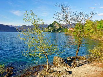 Een voorjaarsavond aan het meer - Lago Maggiore Italië van Gisela Scheffbuch