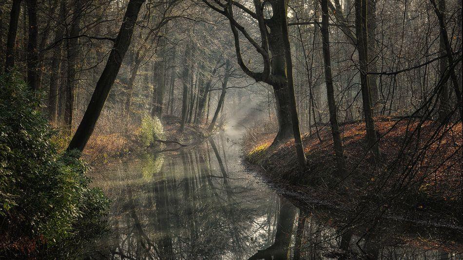 Zonnestralen op een waterpartij van Paul Beentjes