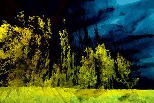 Nachtelijke bomenrij in de Biesbosch