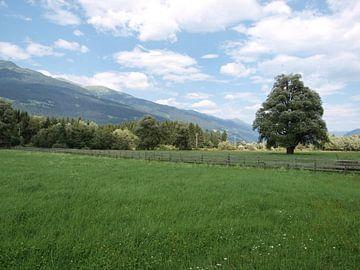 Drautal bij Dellach, Oostenrijk van Rinke Velds