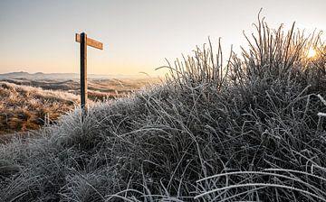 Winter duinlandschap op Texel / Winter landscape of dunes on Texel von Justin Sinner Pictures ( Fotograaf op Texel)