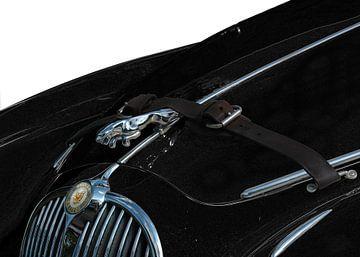 Jaguar Mark II & Leaper van aRi F. Huber