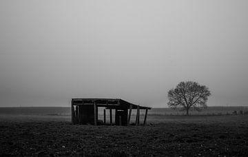 in Flandern Felder von mario vanparys