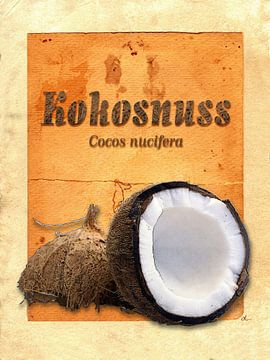 Küchenbild Kokosnuss von Dirk H. Wendt