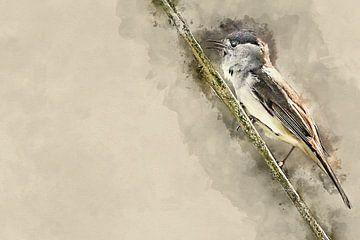 Een mannetjes zwartkop (kunst) van Art by Jeronimo