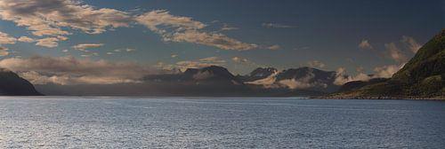Norway coast van