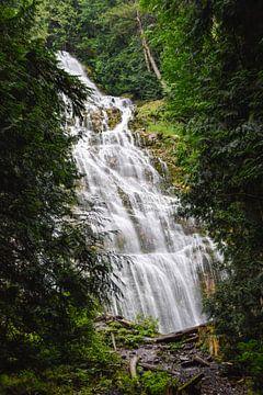 Bridal Falls van Manon Verijdt