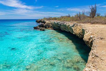 Landschap met rotsachtige kust en ondiepe zee op het eiland Bonaire van Ben Schonewille