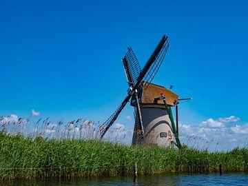 genieten van het uitzicht in Holland