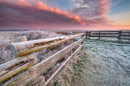 Zonsopkomst op een koude winter ochtend in het Nationaal Park Lauwersmeer