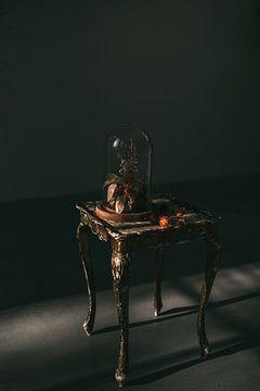 Dunkles Stilleben Stolp | Fine Art Photo Print | Tumbleweed &; Fireflies Photography von Eva Krebbers | Tumbleweed & Fireflies Photography