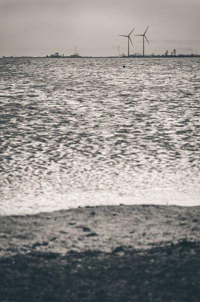 At the horizon - monochrome (Marken) van Alessia Peviani