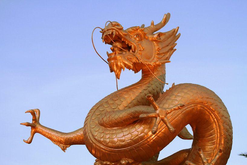 Dragon in Phuket  van Annasus Nenolas