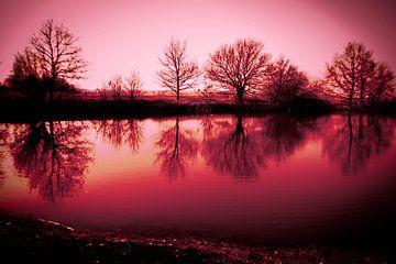 roze wereld von Saskia Cloo-Hartsema