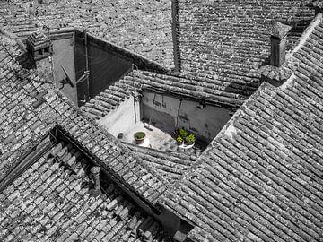 Roof terrace van Roelof Nijholt