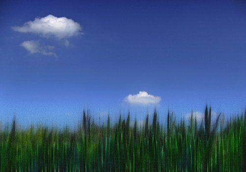 dreamlandscape sur