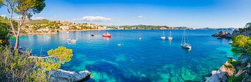 Panorama uitzicht op Cala Fornells, Mallorca, Spanje van Alex Winter