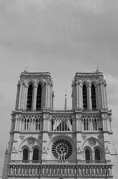 De torens van de Notre Dame von Sean Vos