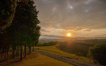 Toscaanse ochtend van Michael Echteld